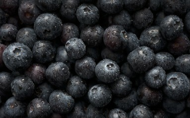 Close up photograph of bluberries with water droplets