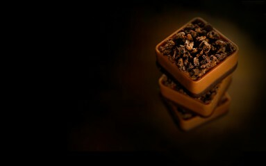 Food photography Example - chocolates on a dark brown background